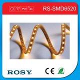 Nuovo indicatore luminoso di nastro flessibile di premio SMD LED della Cina Guangzhou