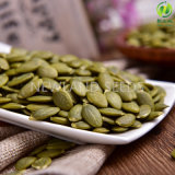 Semi di zucca verdi cinesi con Qualityaa superiore