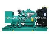 350kVA de V.S. Googol Diesel Generator met Marathon Alternator