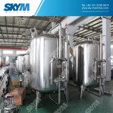 Système de traitement des eaux d'osmose d'inversion pour l'eau ultra pure de pharmacie