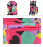 다채로운 나일론 여가 학교 책가방