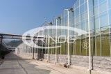 Invernadero de cristal agrícola