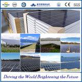 Comitati solari di alta efficienza di vendita diretta della Cina poli con il prezzo competitivo