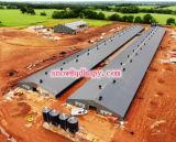 Edifício da construção de aço para o escritório da oficina do armazém dos rebanhos animais com a instalação eficiente