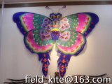 2016 cinesi Traditional Handicraft Butterfly Kite con Tails