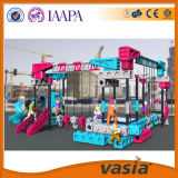Amusement Park를 위한 큰 Size High Quality Architects Kids Indoor Playground Equipment