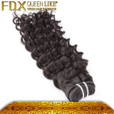 Bestes Menschenhaar Supplier Malaysian Deep Wave 7A Grade Hair