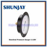 En à bride stable 837-1 d'indicateur de pression d'avant en acier noir de cas