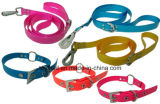 Collier de chien Col de chat Leash Harness Pet Lead