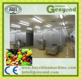 Limpar a linha da trasformação de frutos dos vegetais em China