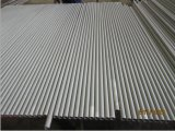 De de naadloze Pijp/Buis van het Roestvrij staal (TP310S)
