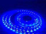 Tube sous-marin de silicones de la lumière de bande de la bande DEL de GS3528-96-CV-12 DEL IP67