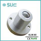 Edison 칩 (Slm 60)에 옥외를 위한 1W/3W IP54 LED 표시 모듈 점화 LED 모듈
