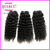 8A等級の高品質の人間の毛髪、深い波のヘアースタイル