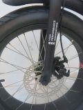 """سمين إطار العجلة 20 """" درّاجة كهربائيّة درّاجة كهربائيّة [إبيك] ([تدن01ف])"""
