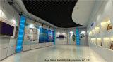 Visualización de pared para el salón de muestras grande del comercio justo de la cabina de pasillo de exposición