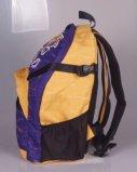 Rucksack des Beifall-Hot Pack Polyester-600-Denier