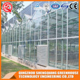 Estufa do vidro do jardim do baixo custo da agricultura
