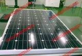 太陽プラント(2017年)のための30Vモノラル太陽電池パネル240W- 260W