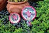 L'audit BPA de BSCI libèrent le jeu en bambou de vaisselle de gosses de fibre
