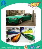 Vernice di spruzzo automatica personalizzata rifornimento della polvere di lucentezza del poliestere della vernice dell'automobile di colore del fornitore dell'AG