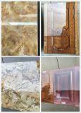 Máquina de madera de la pintura de Floor/PVC con Ce en China