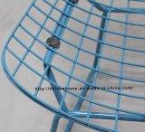 現代食事のレストランは金属のBertoia青いワイヤー椅子をたたく