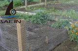 Ячеистая сеть Sailin шестиугольная для заводов сада