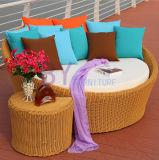 余暇のPEの藤のLyingbed Sunbedの屋外の家具