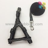 Nylon Webbing Pet Dog Leash 9 couleurs Factory Stock Wholesale