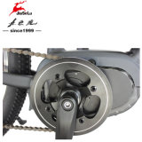 bicyclette électrique de saleté de MI moteur sans frottoir de 36V 350W (JSL035G-4)