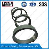 FREI-Serien-hydraulische Abnützung-Ring-/Zylinder-Rod-Führungs-Ring-Dichtung