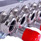 Regolatore del motore in-1 di V&T 5 per il sistema di azionamento del veicolo utilitario/invertitore dell'automobile