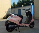 1000With500W motorino elettrico, bici elettrica, bicicletta elettrica (diamante)