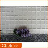최고 백색 Polished 사기그릇 지면 도와 (P6040N)