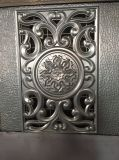 Стальная прессформа кожи двери в самом лучшем цене