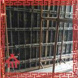 Molde concreto complexo da parede das construções