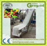 Limpar a máquina vegetal da trasformação de frutos