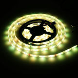 Tira flexible de la C.C. 12V 24V SMD5050 RGBW LED