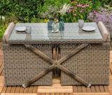 Jogo ao ar livre do cubo de Seater da mobília 2 simplesmente do pátio para qualquer tempo do jardim do projeto