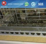 Automatischer H-Typ Huhn-Schicht-Rahmen für Bratrost
