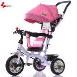 Triciclo del bebé con el pabellón/barra del empuje para 9 viejos cabritos de Months-4years