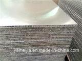 le nid d'abeilles enduit de 25mm PE/PVDF lambrisse les panneaux de revêtement extérieurs de mur en métal