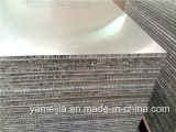 сот 25mm PE/PVDF Coated обшивает панелями внешние панели плакирования стены металла