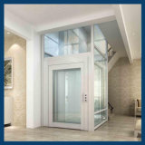 Fabbrica Price Small New Home Villa 450kg Elevator