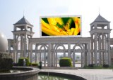P16 a todo color al aire libre pantalla LED Billboard