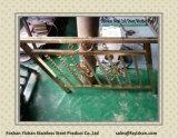 De in het groot In reliëf gemaakte Pijp van de Decoratie van het Roestvrij staal voor het Traliewerk van de Trede