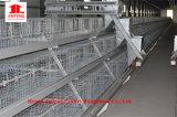 Matériel de volaille de ferme de poulet pour l'élevage de grilleur de couche