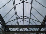Estufa de vidro inteligente Growing vegetal da venda de Direc da fábrica