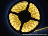 5050 striscia impermeabile di bianco LED con il tubo